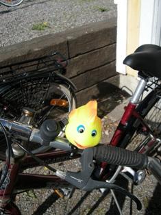 Vi fick var sin fin cykeltuta. Jag valde en fisk