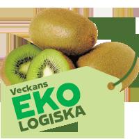 eko_kiwi