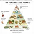 healthy-eating-pyramid-700-link1-300x300